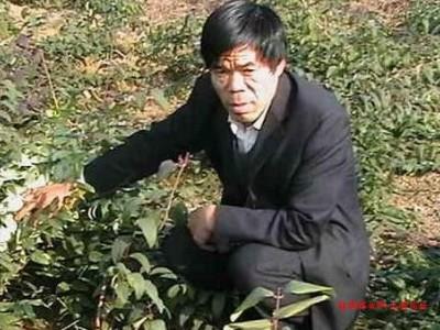 湖南娄底两个成功的农村种植行业的专业合作社的成功经验
