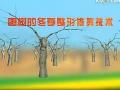 枣树的冬季整形修剪技术 (797播放)