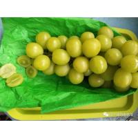 阳光玫瑰葡萄(5斤装,8月中上市)